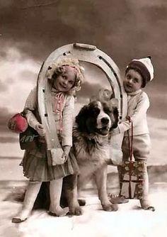1910 horse shoe dog
