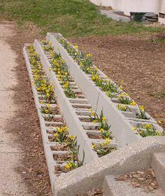 cinder block terrace garden