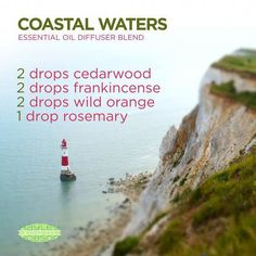 I love the smell of the ocean! And this essential oils diffuser blend brings the feeling of being on the coast right to you. Cedarwood's warm and woody scent evokes feelings of wellness and vitality. Frankincense promotes feelings of peace, relaxation, sa Essential Oil Diffuser Blends, Doterra Essential Oils, Natural Essential Oils, Doterra Diffuser, Cedarwood Essential Oil, Yl Oils, Aromatherapy Oils, Aromatherapy Recipes, Young Living