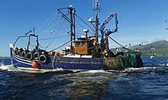 Angus Rose III, a rear-trawler
