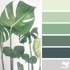 Das heutige Inspirationsbild für {color nature} stammt von @la_roseraie_ ... danke ... #color #danke #heutige #inspirationsbild #nature