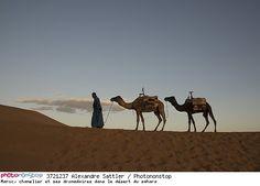 Maroc, chamelier et ses dromadaires dans le désert du sahara -- Afrique Afrique Du Nord Animal Artiodactyle Asie Chamelier Dromadaire Dune Loisirs Maghreb Mammifère Maroc Monde Ongulé Paysage Placentaire Ruminant Vertébré Voyage