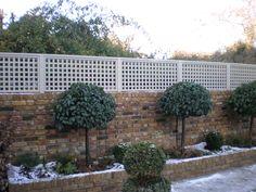 Trellis above brick privacy fence Wall Trellis, Trellis Fence, Garden Trellis, Garden Fencing, Back Gardens, Small Gardens, Outdoor Gardens, Fence Design, Garden Design