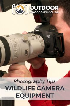 Watch this video to learn about the most important wildlife photography equipment to have along with you on a shoot. We'll discuss three specific items. Wildlife Photography Tips, Photography Essentials, Photography Basics, Photography Lessons, Photography For Beginners, Photography Equipment, Photography Tutorials, Photography Accessories, Animal Photography