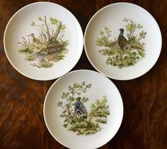 Schumann Bavaria Arzberg Germany Golden Crown Eu0026R Collectable Bird Plates Pheasant TYCAALAK & Duck Plates : Miniature Decorative Plates | Iu0027d hang that on a wall ...