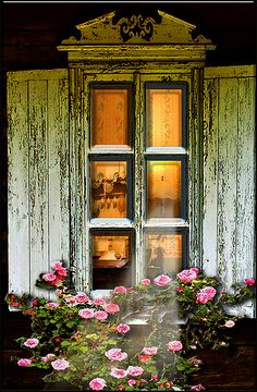 Looking into golden-lit antique windows....