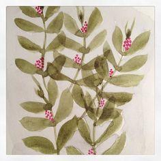 #plantes #fleurs #illustrationaquarelle #nature #illustration #aquarelle #leaves #green by romybangbang
