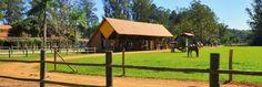 Para os cavalos - Lazer - Hotel Fazenda Mazzaropi - Taubaté - Brasil