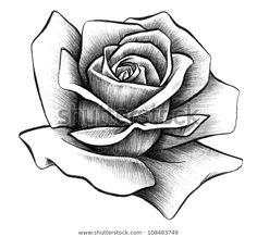 Rose Drawing Discover Rose Rendering Stock Illustration 108483749 Rose Rendering by SPYDER via ShutterStock Tattoo Artwork, Tattoo Design Drawings, Pencil Art Drawings, Art Drawings Sketches, Tattoo Sketches, Rose Drawings, Drawing Art, Rose Flower Tattoos, Rose Tattoos For Men