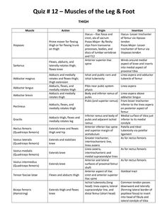 Muscle Origins And Insertions Table  Muscles Chart  School