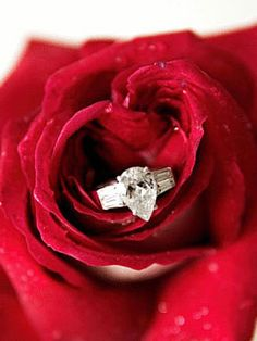 Show off your wholesale diamond ring for your wedding day! [ 1diamondsource.com ] #wholesale #diamond #quality