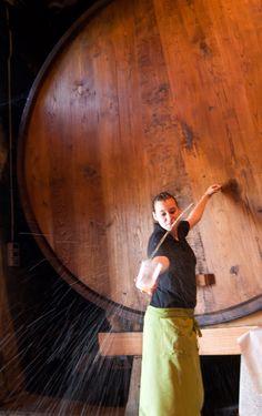Sidra espichada del tonel en #LlagarLavandera #CasaTrabanco #Espichastradicionales Asturias Spain, Places In Spain, Draw On Photos, Food And Drink, Around The Worlds, Paraiso Natural, Beautiful, Folk, Decoration