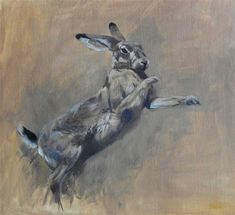 Oil, 50 x 50 cm, £495 - or spread the cost, interest-free over 10 months with Own Art. Part of The Natural Eye 2020, Society of Wildlife Artists Annual Exhibition, at Mall Galleries from 28 October to 8 November. Browse and Buy the whole exhibition online. #WildlifeArt #Hare #Animals #Conservation #AffordableArt #Drawing #Painting #BoxingHares #MarchHare