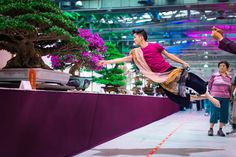 Asian man caressing colorful bonsai tree mid air