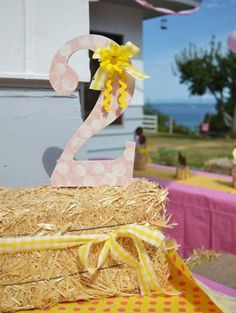 Pink gingham farm party