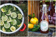 Mátový sirup Preserves, Pesto, Pickles, Cantaloupe, Herbs, Homemade, Baking, Fruit, Drinks