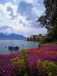 """Printemps à Montreux 3"" by Hakki Arican on 500px - Printemps a Montreux 3"