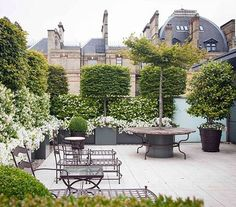 Rooftop Garden More