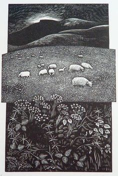 """Siluria"" by Hilary Paynter (wood engraving)"