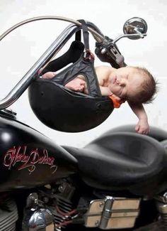 Harley pic