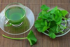 Try this Celery Tea Recipe for Weight Loss! - Step To Health Natural Cures, Natural Health, Herbal Remedies, Home Remedies, Parsley Tea, Trouble Anxieux, Medicinal Herbs, Meal Planner, Tea Recipes