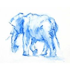 blue elephant watercolor - Polyvore