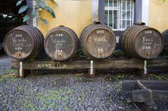 Madeira Wine- Artur de Barros e Sousa, Lda. Madeiran wine cellar for wines in oak barrels. Verdelho & Boal, Madeira, Portugal