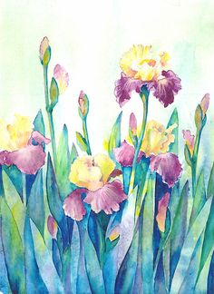 Irises by Tania Vasylenko.  Watercolor