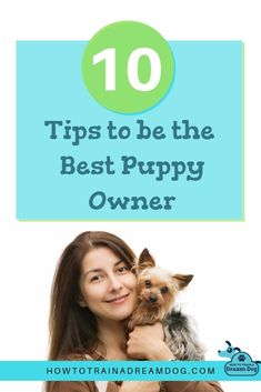 dog learning,dog tips,dog care,teach your dog,dog training Shitzu Puppies, Puppies Tips, Tiny Puppies, Best Puppies, Cute Puppies, Samoyed Dogs, Collie Puppies, Rottweiler Puppies, Retriever Puppies