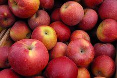dimagrire con aceto di mele