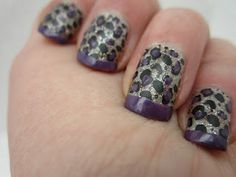 Purple Leopard