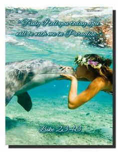 """""""Truly I tell you today, you will be with me in Paradise.""""  Luke 23:43"""