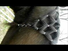 How to do the diamond braid on a horse's mane! - YouTube