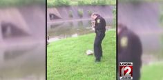 Mommy goose approaches police officers, asks them to save her baby -       Mother Goose isn't the only mama bird with a story.    Cincinnati, Ohio, police officer James Givens was sitting in his patrol car when he heard...