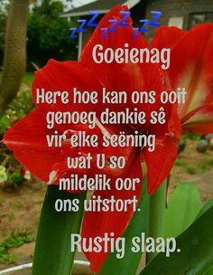 Afrikaanse Quotes, Good Night Blessings, Goeie Nag, Goeie More, Good Night Quotes, Love You More, Beautiful Landscapes, Thoughts, Sleep Tight