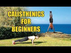 Best Calisthenics Workout Plan - Beginners Guide - Calisthenicsfit