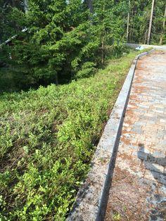 Railroad Tracks, Sidewalk, Garden, Garten, Side Walkway, Lawn And Garden, Walkway, Gardens, Gardening