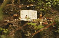 Although it isn't what this is, my first thought on seeing this picture was a memory of making little fairy feasts with acorn cu...