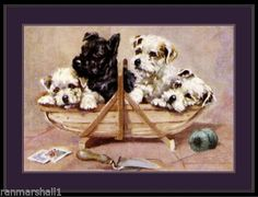Vintage English Print Scottish and Wire Hair Fox Terrier Dogs Art Picture Sealyham Terrier, Terrier Dogs, Print Pictures, Animal Pictures, Scottish Terrier, Vintage Pictures, Dog Art, Dogs And Puppies
