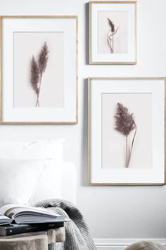 Set of 3 Botanical Prints by ARTbyASolo, Pressed Flower Photo Art, Three Panel Wall Poster, Biology Classroom Decor, Herbarium Photography, Vegan Gift This dried grass printable wall art is perfect for your HOME, FARMHOUSE, OFFICE, NURSERY and KITCHEN. These files are ready to download immediately. There's no need to wait days for the mail to come. You save time and money on shipping.