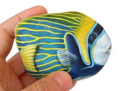 I Painted this Fantastic Emperor Angel Fish on a Rare Shaped Natural Sea Rock. It is One of my Favourites Stone Painted Artworks!