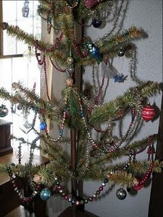 A simple tree...the very best kind.