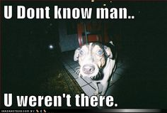 funny dog pictures - U Dont know man..  U weren't there.