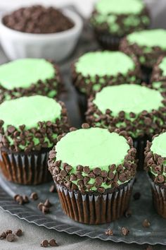 These Mint Chocolate Chip Cupcakes are made with a moist chocolate cupcake, mint frosting and mini chocolate chips! A classic flavor combination in cupcake form! So I am a big fan of music in general. I love jammin' out and I love to dance, even though I Chocolate Chip Cupcakes, Mint Chocolate Chips, Chocolate Recipes, Chocolate Drip, Oreo Cupcakes, Dessert Chocolate, Birthday Cupcakes, Brownie Recipes, Cupcake Recipes