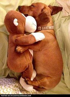 Weiner Dog! Pretty sure Mikey had the same monkey toy