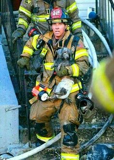 Firefighter saving the dog from the fire...