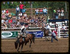 A Small Town Fourth of July Rodeo
