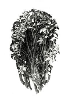 Sanctuary - Rupert Smissen Illustration