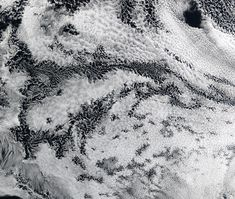 People want to see patterns in the world. It is how we evolved    Satellite photos of actinoform clouds  Title: Benoît Mandelbrot