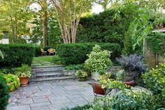 belle terrasse avec une haie vive et une végétation abondante en tant que mur anti-bruit